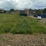 3. Open Fields